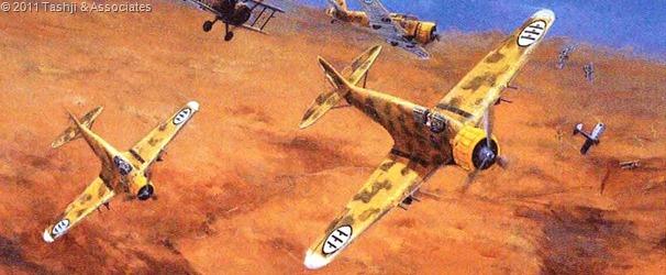 The IqAF type Ba.65